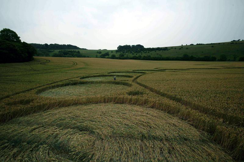 Cosmic Serpent Crop Circle Ground View West Woodhay Down Wiltshire 29th July 2011.jpg