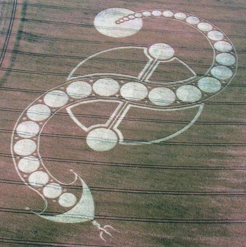 Inverted S Shiva's Trishul Trident  PSI Symbol Crop Circle West Woodhay Down, Wiltshire 29th J...jpg